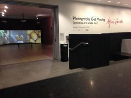 Agnès Varda: Photographs Get Moving (potatoes and shells, too)