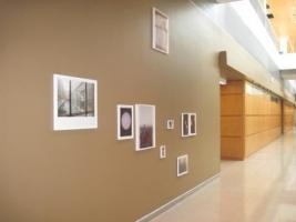 Installation view, work by Wolfgang Tillmans