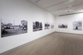 Agnès Varda: Photographs Get Moving (potatoes and shells, too)
