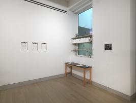 Kirsten Emilie Gindler Installation View: fileroom (shelf installation), Corpus (artist books), Somalogues, IN/ANIMATE DUST. 2015. Photo by Tom Van Eynde