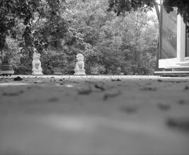 Lions outside of the Farnsworth House, Plano, IL, undated. Courtesy of the Farnsworth House.